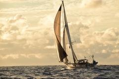 Ariel in navigazione con tridente code, trinchetta e randa
